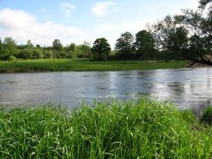 Main Saugeen River; Paisley, Ontario