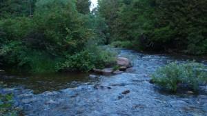 Beatty Saugeen River; West Grey County, Ontario