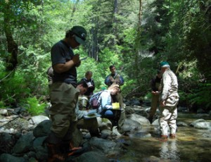 Volunteers Performing Stream Assessment